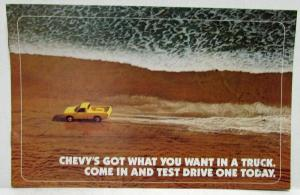1981 Chevrolet Got What You Want In A Truck Sales Mailer Brochure